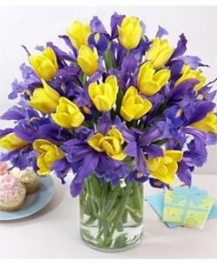 image shows yellow tulips and blue irises in a vase